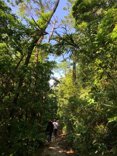 Walk around in Yomitan with my dear friend._c0153966_19003159.jpeg