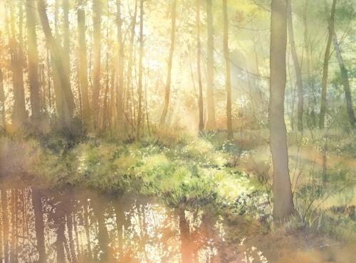黄色い光 水彩画_f0176370_16522098.jpg