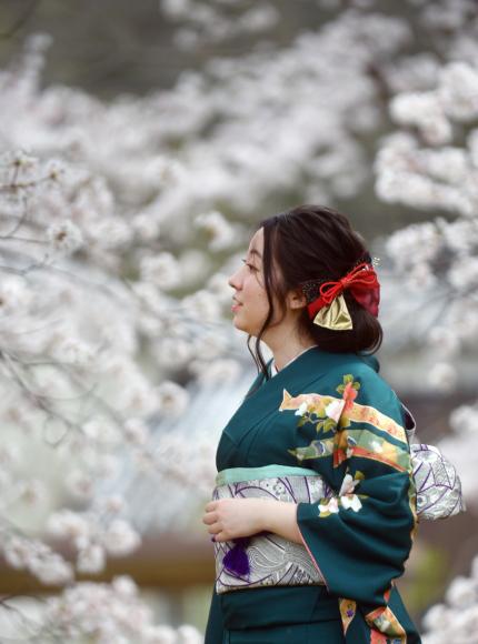 桜の木の下撮影が一番にいい感じで出来たのは....._b0194185_18143956.jpg