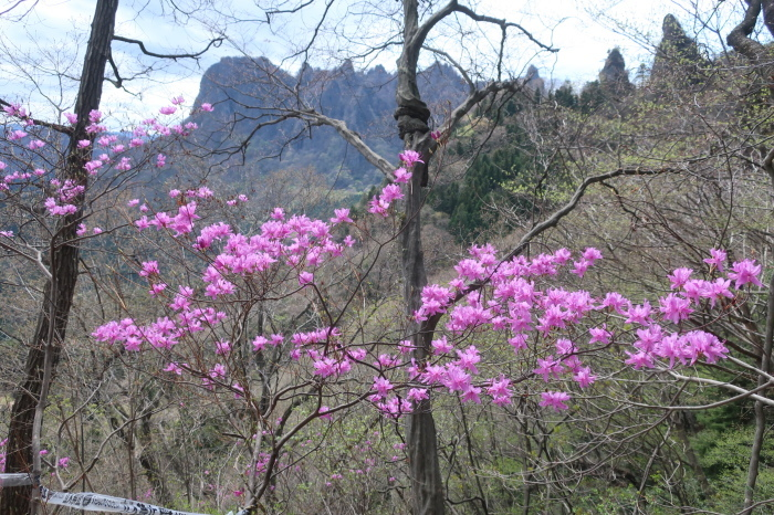 春の妙義山_d0138986_19180740.jpeg