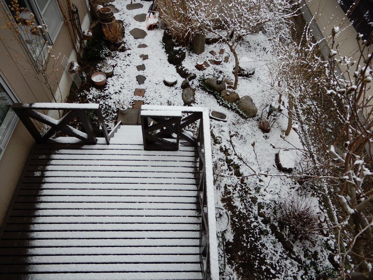 朝だけ戻ってきた冬景色_c0025115_21262258.jpg
