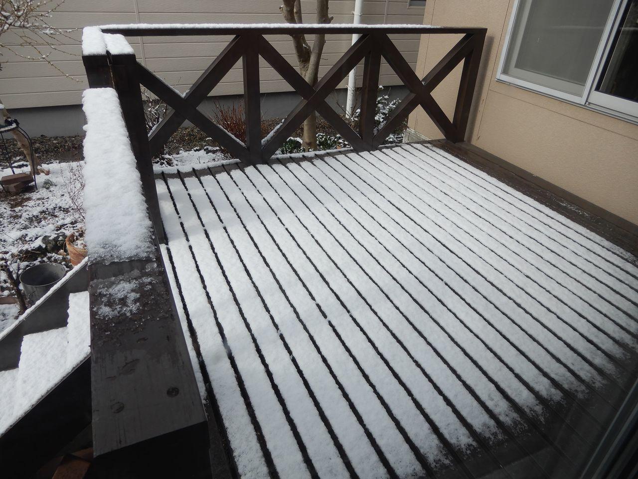 朝だけ戻ってきた冬景色_c0025115_21262672.jpg