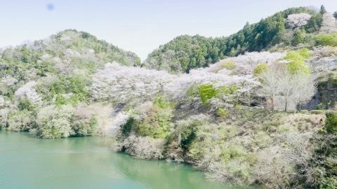 日本に生まれてよかった_b0156734_13311271.jpeg