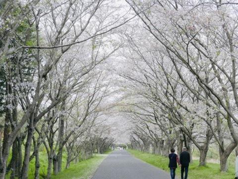 日本に生まれてよかった_b0156734_13321740.jpeg