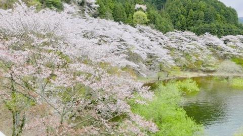 日本に生まれてよかった_b0156734_13325986.jpeg