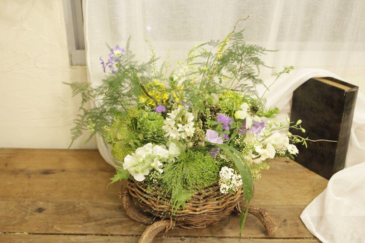 お花畑に連れてって~_d0086634_15285691.jpg