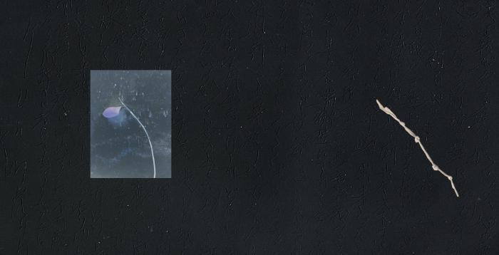 心眼銀河-SHINGANGINGA- 73min56sec 来週よりご予約を開始いたします。_d0158942_05345776.jpg