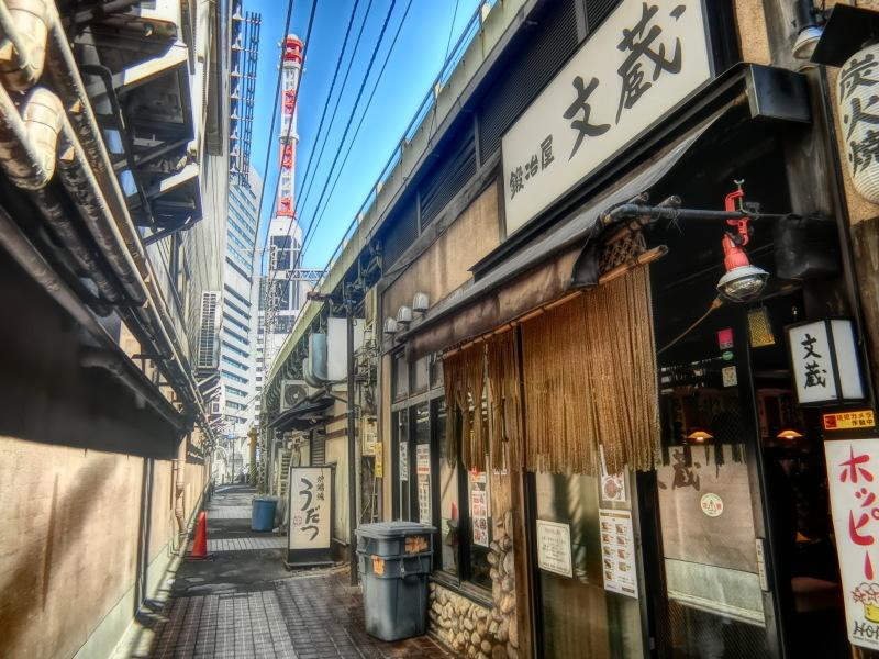 新橋 (9) 新橋駅ガード下_b0408745_09261254.jpeg