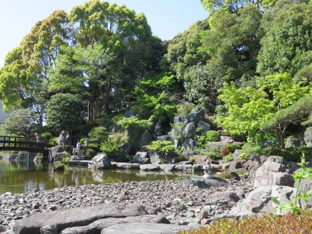 足立区花畑公園 桜花亭の花々_f0329849_21163410.jpg