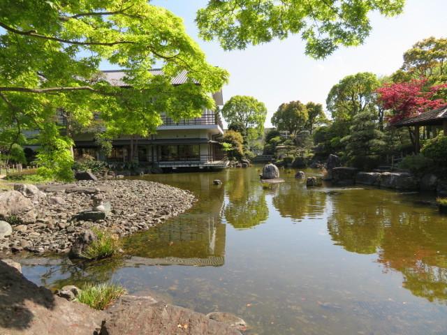 足立区花畑公園 桜花亭の花々_f0329849_21185861.jpg
