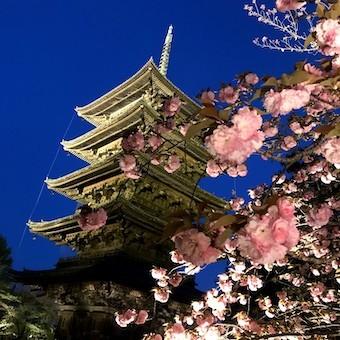 京都のおばんざいランチ_c0031486_13120602.jpg