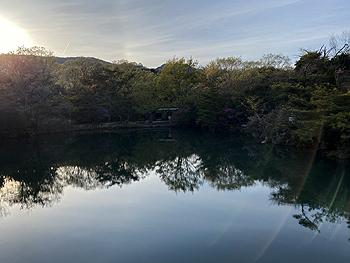 念願の散歩コース_e0103024_23244472.jpg