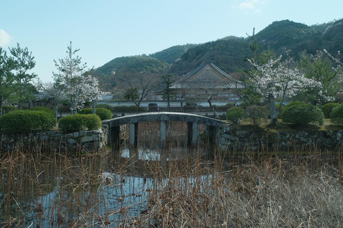 京都 桜 2021_f0021869_17065144.jpg