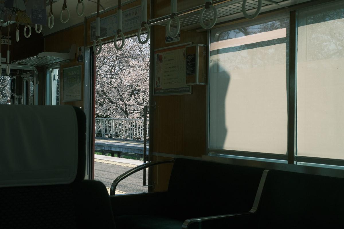 京都 桜 2021_f0021869_17072082.jpg