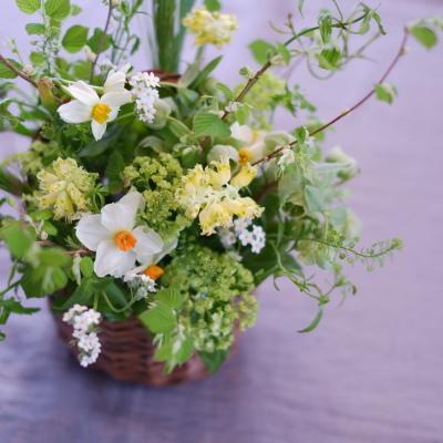 オークリーフ(もがみ食堂さん開店1周年の花)_f0049672_21271920.jpg
