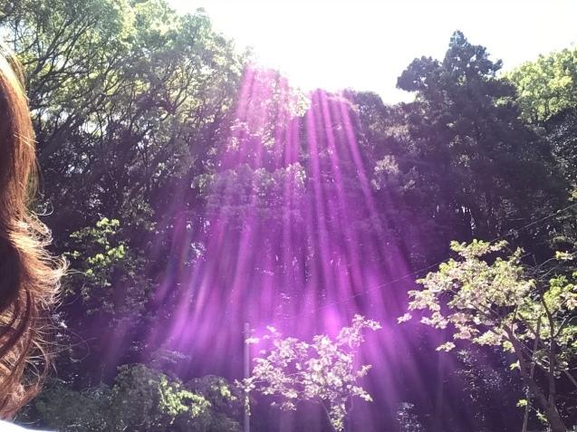 光の快進撃_a0384047_21161450.jpeg