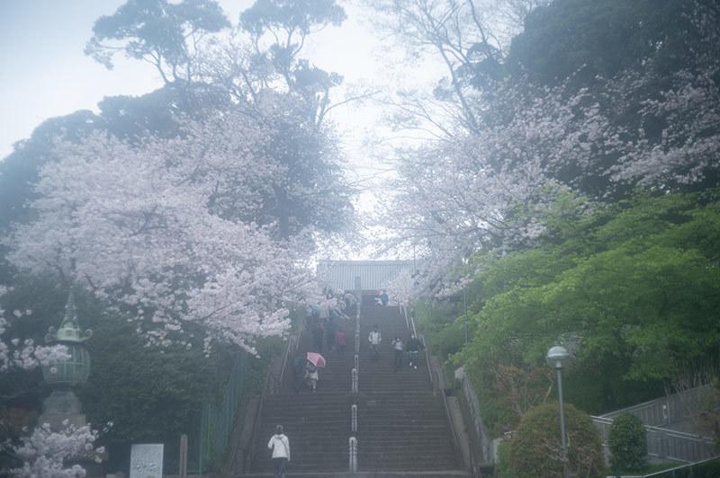 Hello from Tokyo 155 雨の池上_a0003650_22432125.jpg