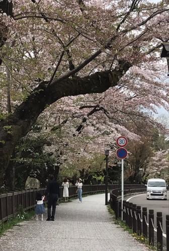 名古屋3日目は犬山城へ_f0395164_22132582.jpg