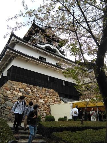 名古屋3日目は犬山城へ_f0395164_22393286.jpg