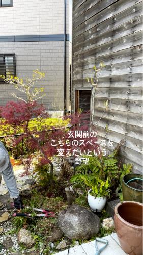 お花見⭐︎ピクニック弁当_a0142778_23442256.jpg