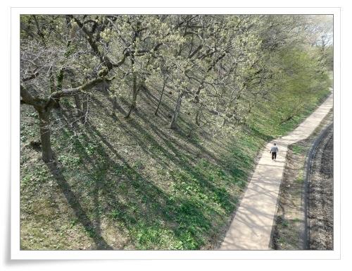春の那須旅 2日目_d0174983_17482427.jpg