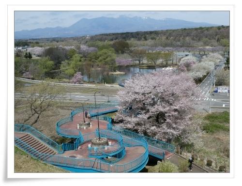 春の那須旅 2日目_d0174983_17483643.jpg