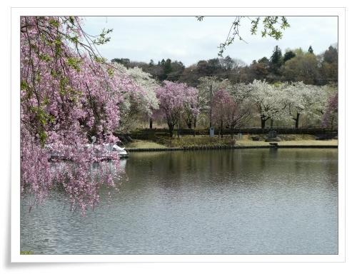 春の那須旅 2日目_d0174983_17484044.jpg