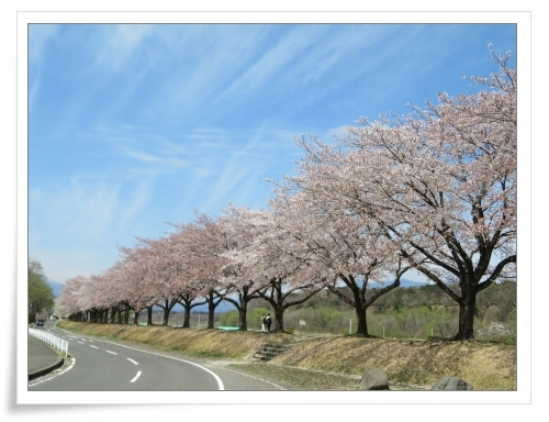 春の那須旅 2日目_d0174983_17484258.jpg