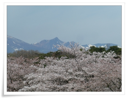 春の那須旅 2日目_d0174983_17485155.jpg