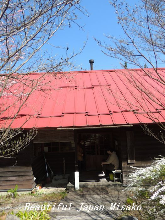 美味しい美味しい蕎麦屋です・゚☆、・:`☆・・゚・゚☆駒ヶ根_c0067206_20553669.jpg