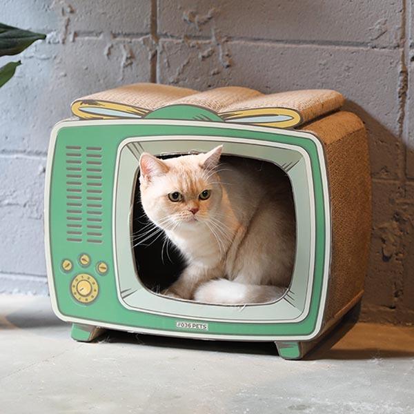 2月13日 & トイレの回数 & awesome storeの猫の爪とぎ_b0162726_08141700.jpg