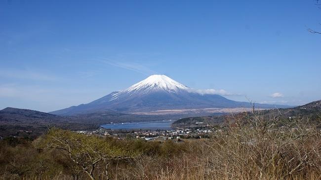 富士周辺も春がやってきました!桜が咲き始めました。【山中湖の富士山】_d0153860_16443941.jpg