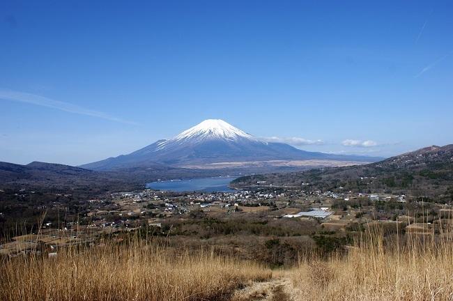 富士周辺も春がやってきました!桜が咲き始めました。【山中湖の富士山】_d0153860_16450037.jpg