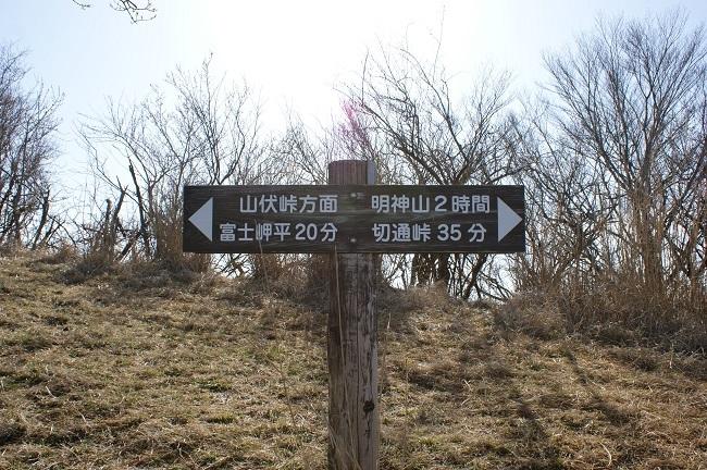 富士周辺も春がやってきました!桜が咲き始めました。【山中湖の富士山】_d0153860_16450407.jpg