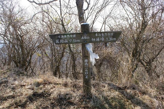 富士周辺も春がやってきました!桜が咲き始めました。【山中湖の富士山】_d0153860_16450655.jpg