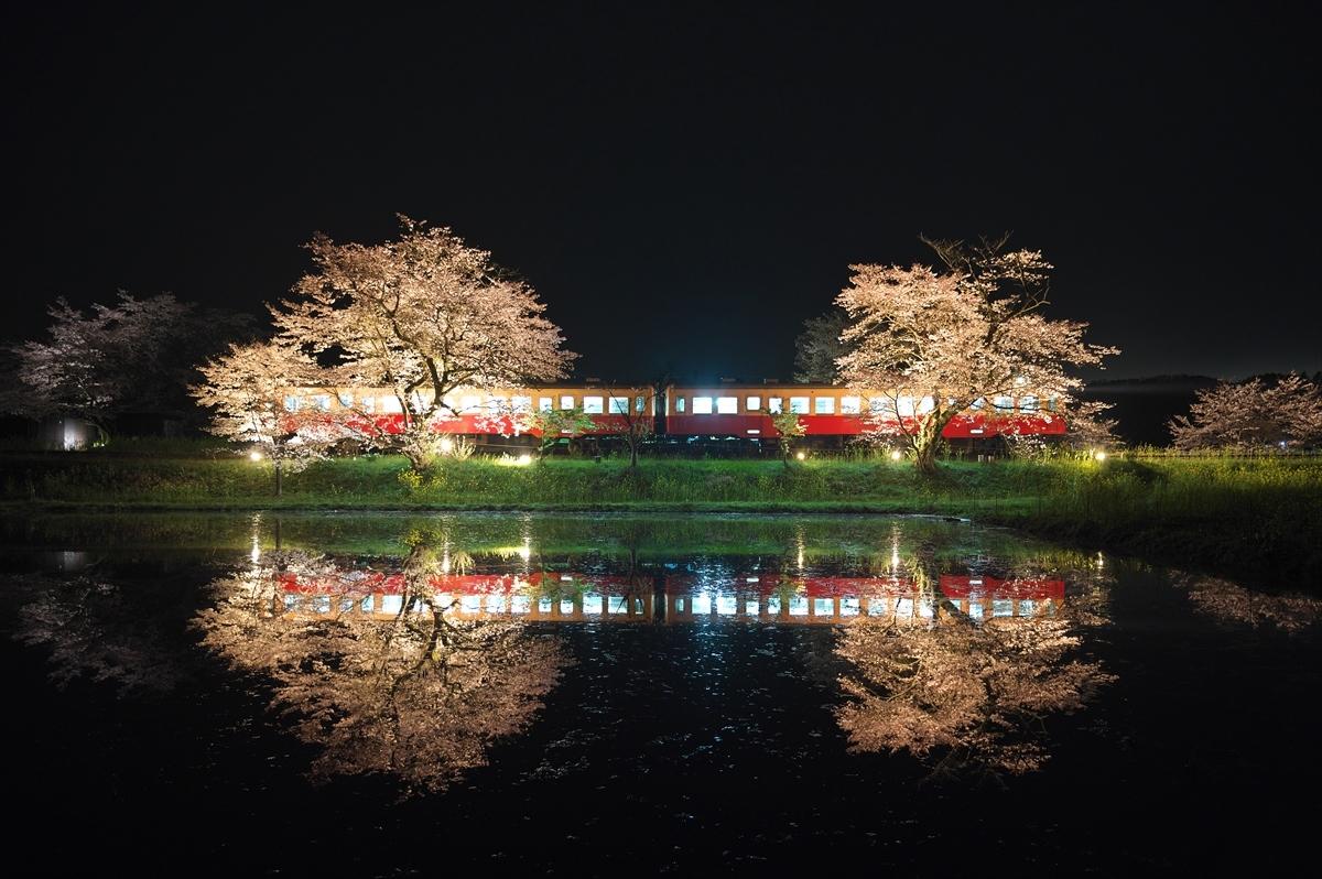 春うらら4 ~仲春の小湊鐡道~_f0018464_21532209.jpg