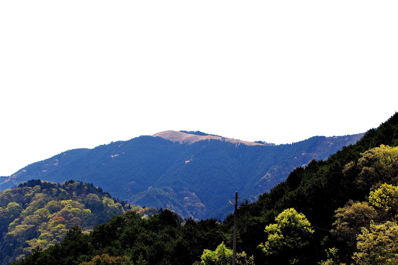 岩湧山の山焼き_f0215767_09213148.jpg