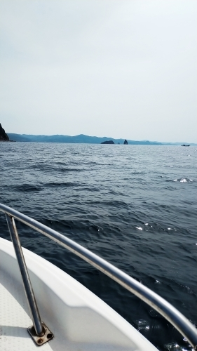 海へ_d0195183_07305164.jpg