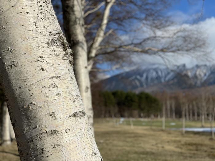 春の雪_d0077992_09560327.jpg