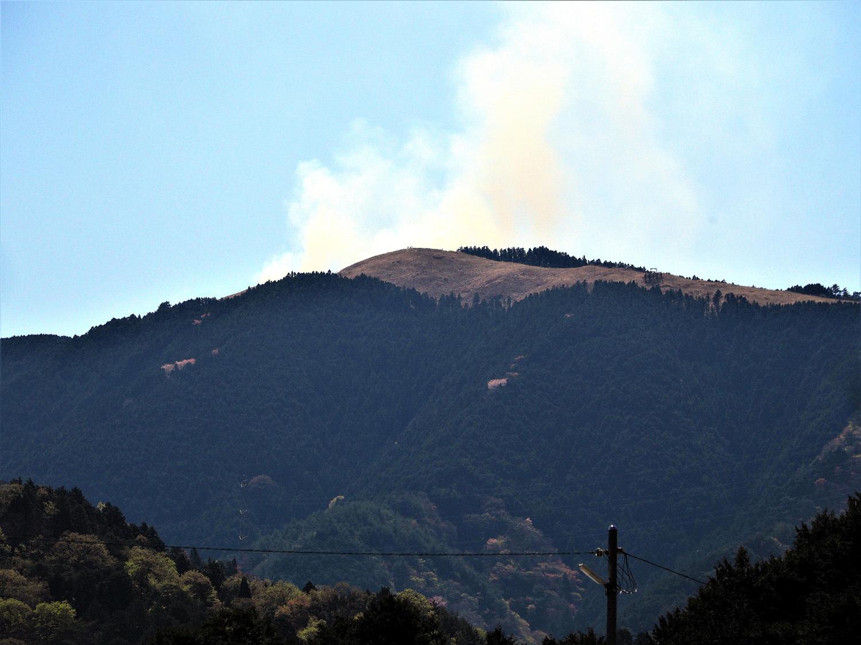 岩湧山の山焼き_e0254493_16363062.jpg