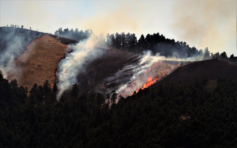 岩湧山の山焼き_e0254493_16530391.jpg