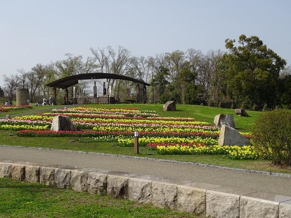馬見丘陵公園のチューリップ(カリオンの丘)_b0299042_12080005.jpg