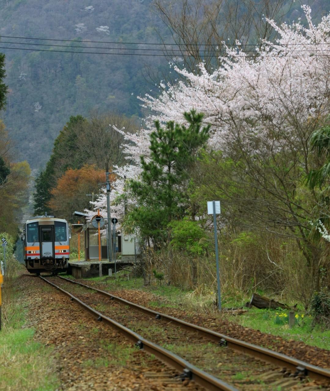 知和駅旅情パート3_f0371447_10282552.jpg