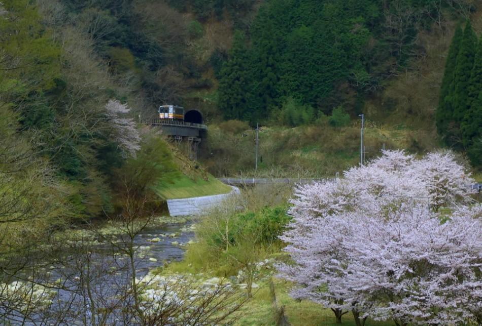 谷川と共に_f0371447_11162278.jpg