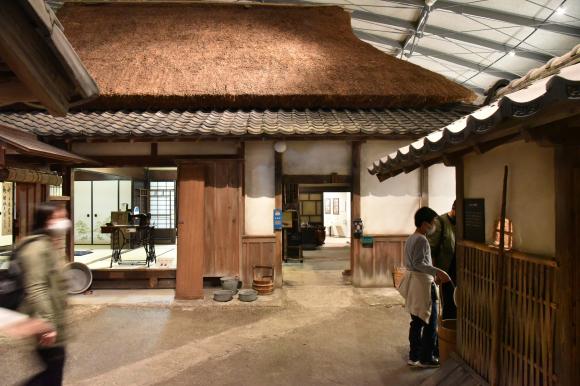 琵琶湖博物館 その―2_e0164563_11264041.jpg