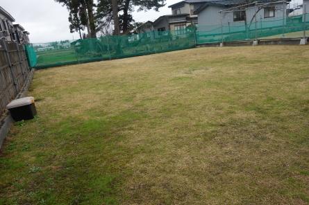 屋外ドッグラン全エリアオープン(^^)v_f0170713_08250027.jpg