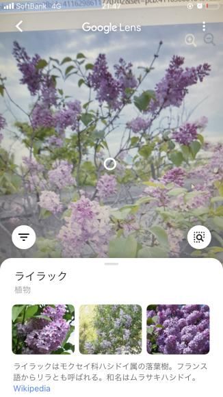 ブログ更新滞りがち😰_a0098418_18090364.jpg