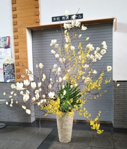 木蓮の香り_c0165824_18245871.jpg