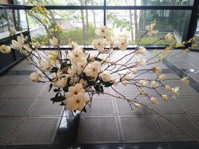 木蓮の香り_c0165824_18280536.jpg