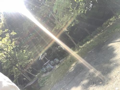 お天道様は見ている_a0384047_22054433.jpeg